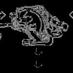 clutch_actuator